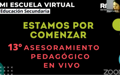 13 asesoramiento pedagogico en vivo