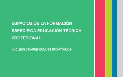 Espacios de la formación especifica educación técnica profesional