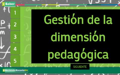 Gestión de la dimensión pedagógica