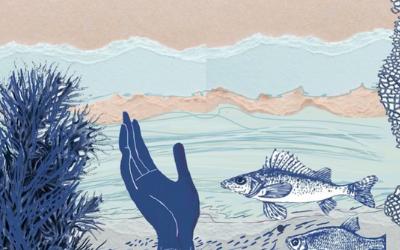 Método para pescar sin anzuelo