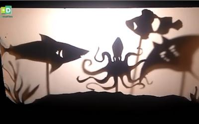 Sombras que cuentan historias Sombras bajo el mar