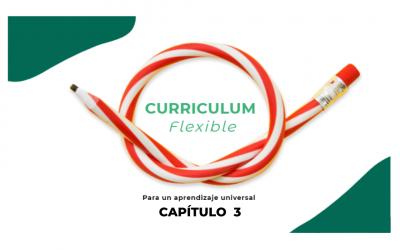 curriculum-flexible-cap-3
