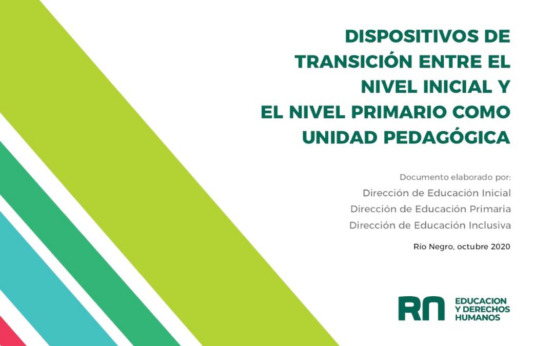 disp-transicion-nivel-inicial-primario-unidad-pedagogica
