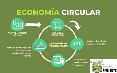 episodio-01-economia-circular