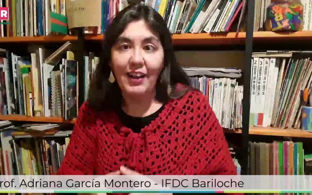 Desarrollo curricular Lengua: Presentación