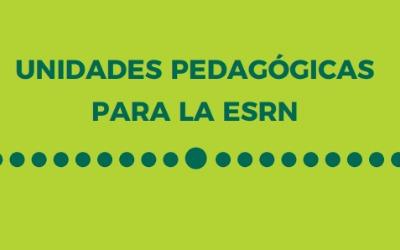 secundaria unidades pedagogicas 2021