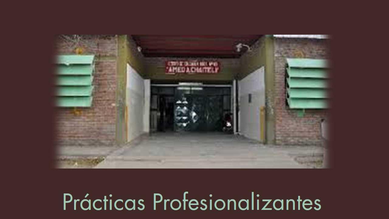 web-practicas-profesionalizantes