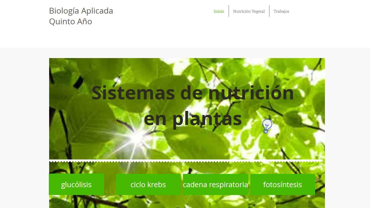 web-sistemas-de-nutricion-en-plantas